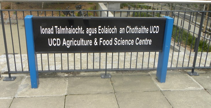 The unofficial guide to UCD for new Ag students (not suitable for parents)