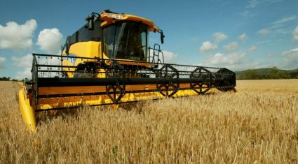 'Hybrid barley growers make more money'