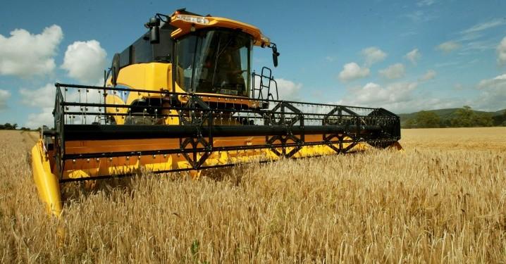 'Hybrid barley growers make more money'