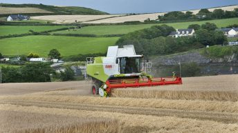 Mixed fortunes for tillage farmers with north-south divide on yields