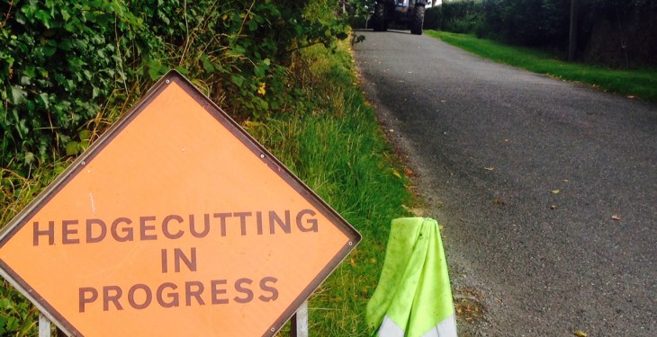 Minister says new hedgecutting rules will be 'subject to restrictions'