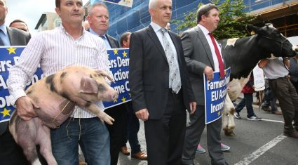 Investigation to be launched into ongoing issues in IFA Pigs Committee