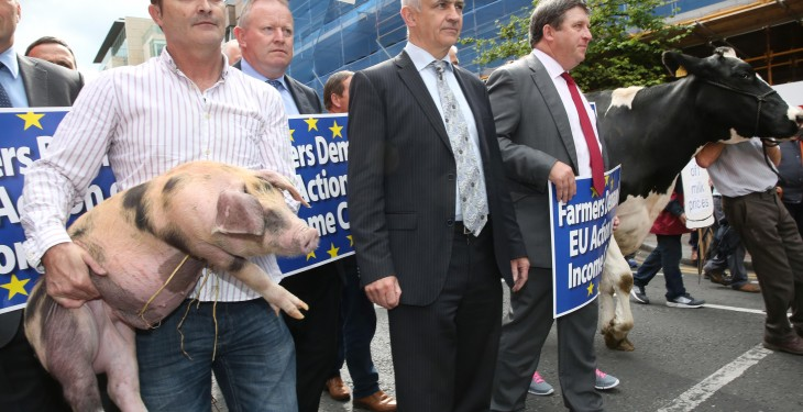 IFA Pigs Committee faces potential split