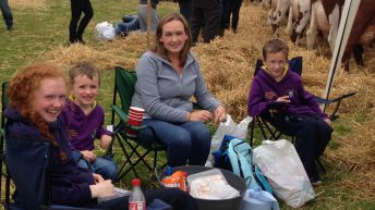 Pics: Over 60,000 attend the Tullamore Show