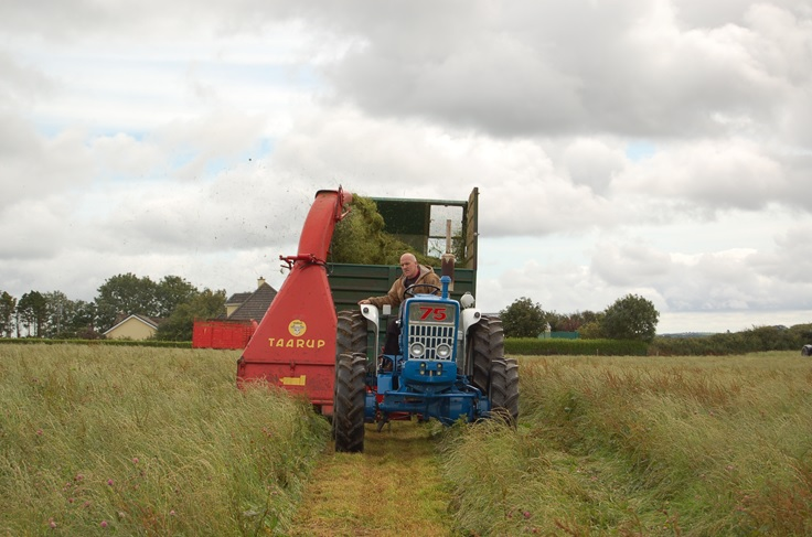 Video: Classic harvesters cutting silage in Cork