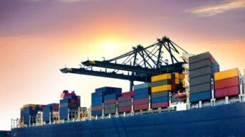 Chinese sheepmeat imports drop 22%, falling demand to blame