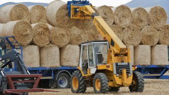 Round bales of straw making €10-15/bale across the country