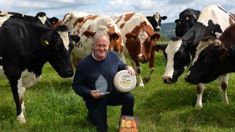 Irish cheesemakers win 69 awards at International Cheese Awards