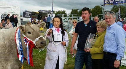 Westmeath heifer crowned champion commercial animal at Tullamore Show