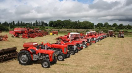 Pics: Vintage machinery to swing into action at annual Harvest Extravaganza