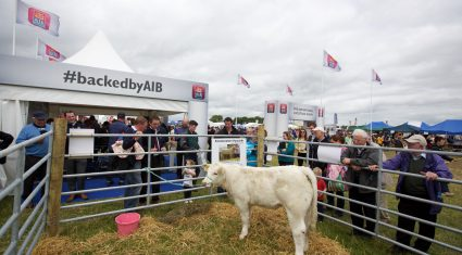 Reminder: Traffic plan in place for tomorrow's Tullamore Show
