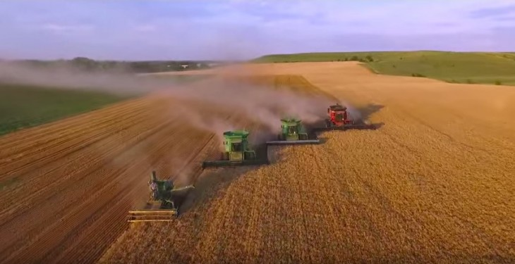 U.S. wheat stocks set to be largest in 29 years