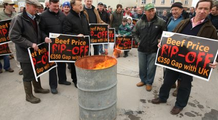Teagasc data shows serious impact of beef crisis on beef finishers in 2014