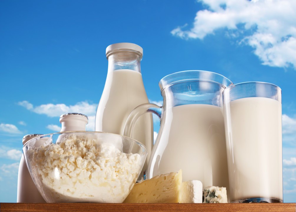 Flat 'per dairy farm' distribution of dairy aid package is fairest, says ICMSA