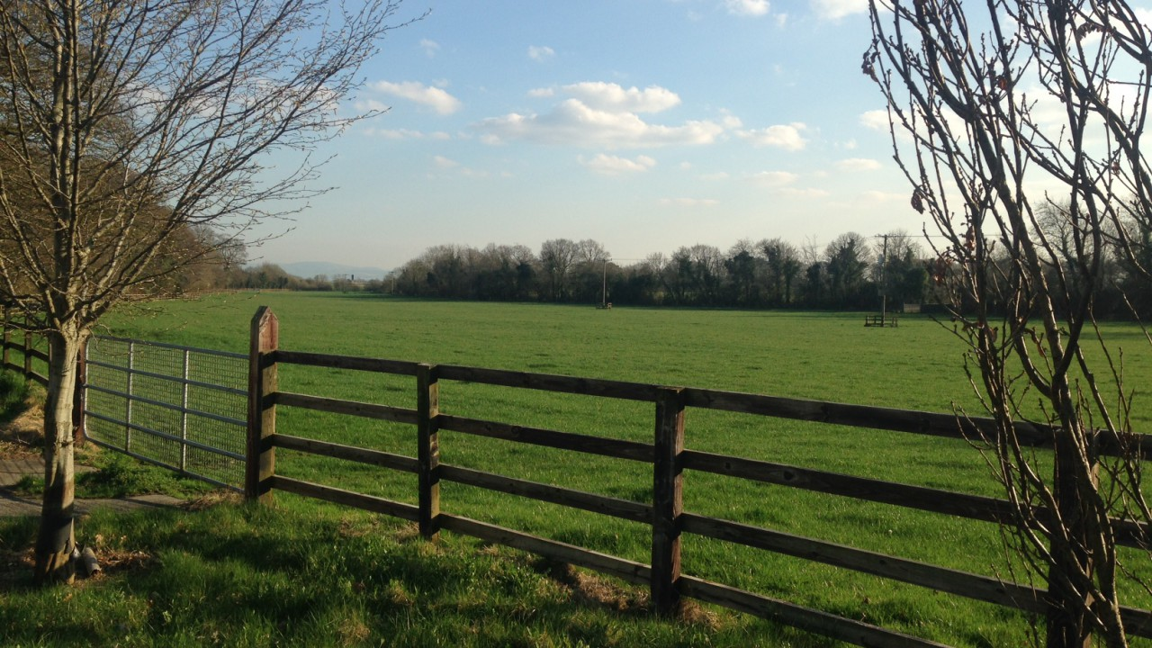Dry and mild weather to continue into next week – Met Eireann