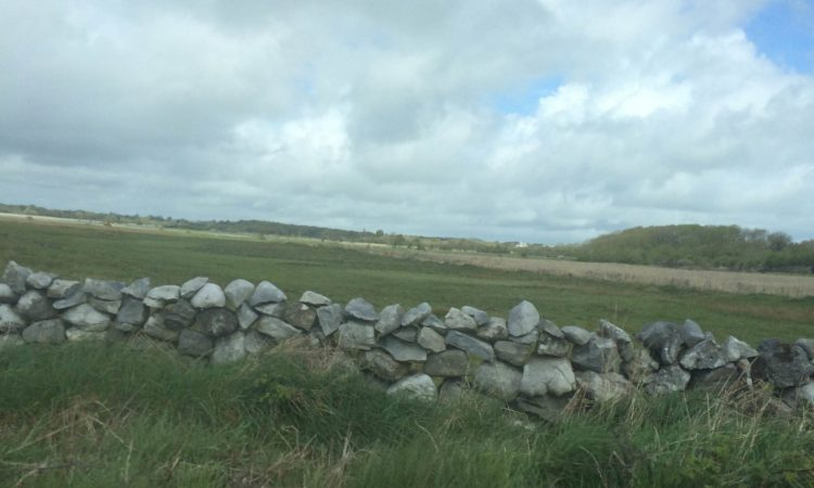 Showery start to the week, cooler weather on the way – Met Eireann