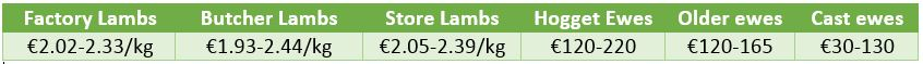 lamb prices 2508