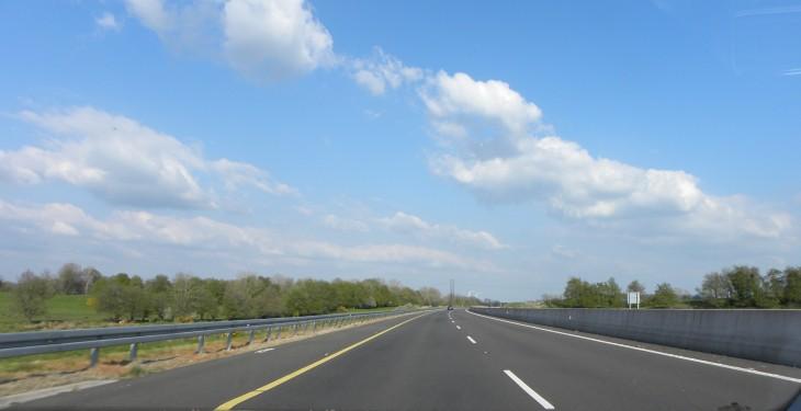 Cattle cause mayhem on Dublin to Limerick motorway