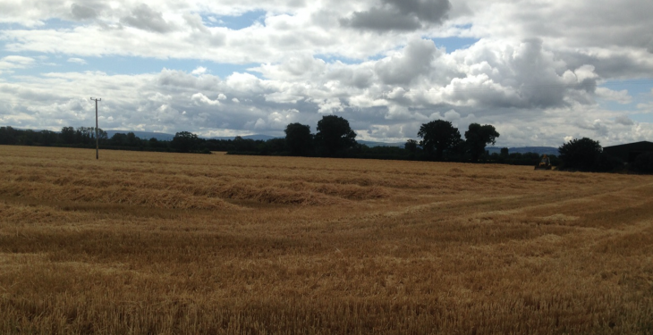 'Northern arable farmers going into autumn facing losses on crops'