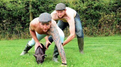 The topless Irish farmer calendar is going stateside