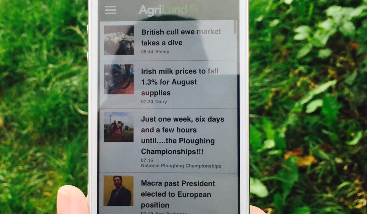 See how IFA members can get €180 off their Vodafone phone bill