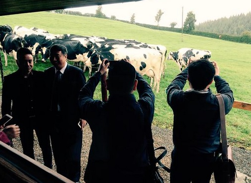 High-level Chinese delegation kicks off visit to Ireland at 120ha Wicklow dairy farm