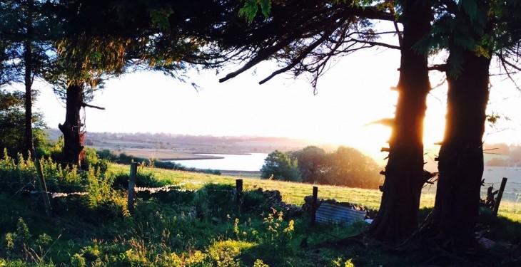 Light showers this weekend, dry and settled next week – Met Eireann