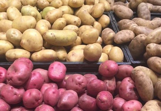 Rooster potato prices increase by 40% year-on-year