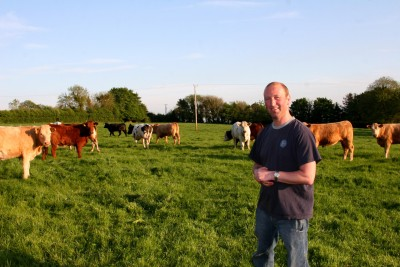 ray and cattle