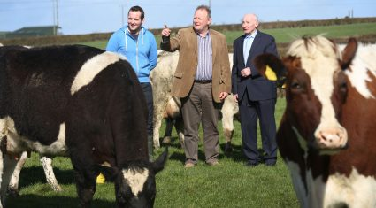 How do you feel about the EU dairy package? 'Underwhelmed' – IFA Dairy Chairman