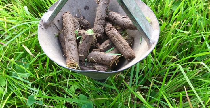 Soil testing survey reveals important grassland fertility trends