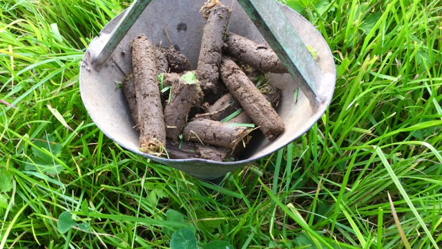Now is the ideal time to take soil samples