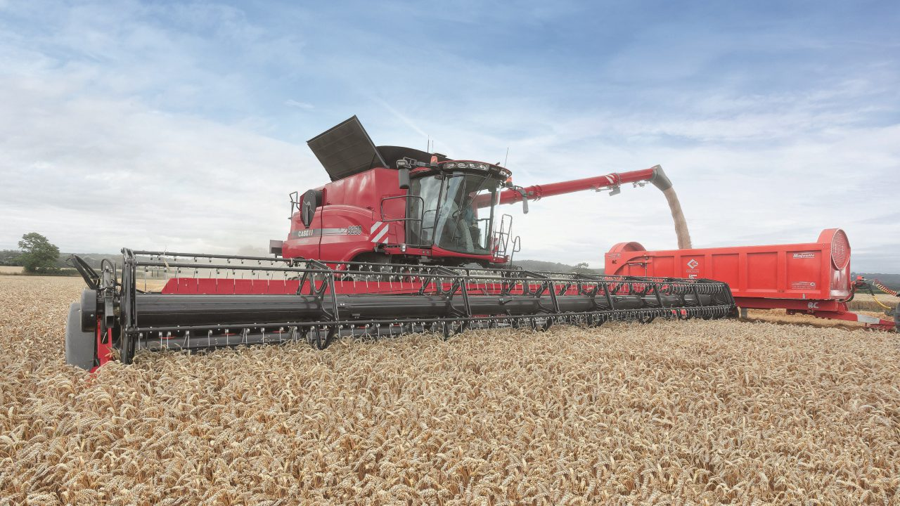 UK 2015 wheat and barley yields reach new records