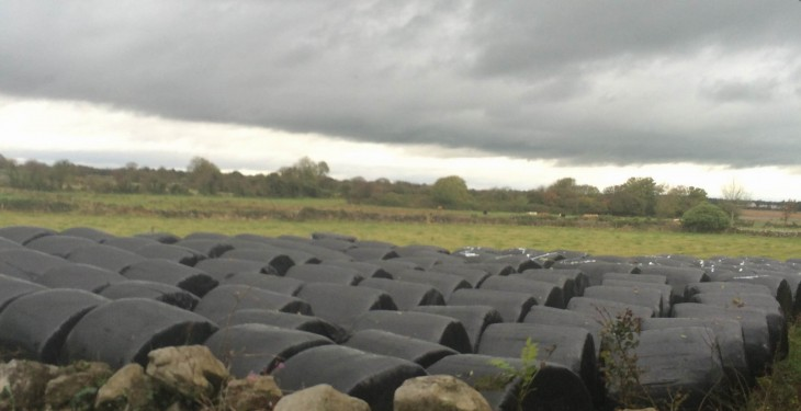 Up to 25mm of rain in the west but mostly dry this weekend – Met Eireann