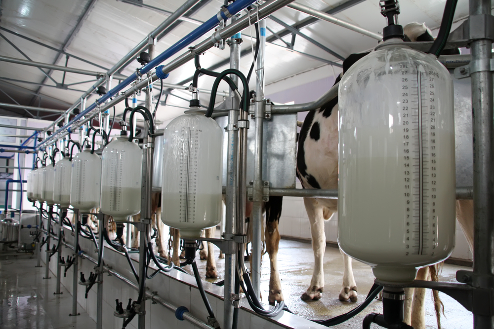 'Payment of EU dairy aid package could be delayed until March 2016'