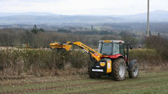 Hedgerow planting pulled from GLAS 'due to lack of planting stock'