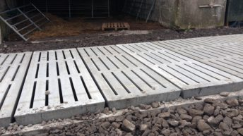 Farmers can convert existing sheds to slatted units under TAMS II