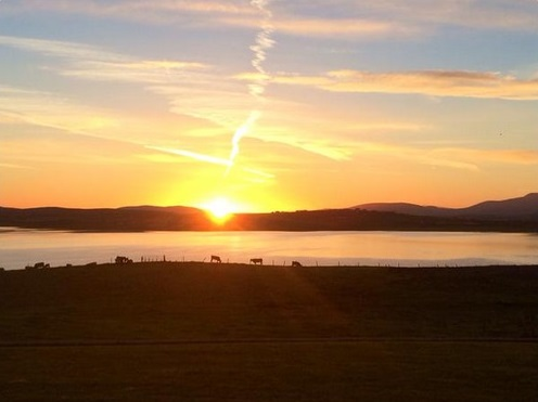 Pics: The crisp, cool autumn weather has arrived on Irish farms