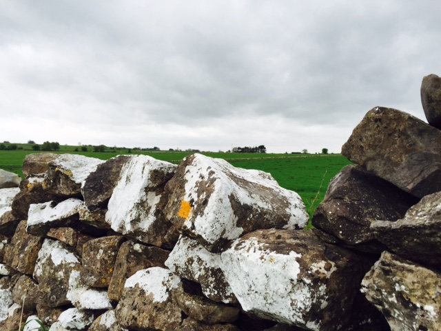Dry and settled conditions this week – Met Eireann