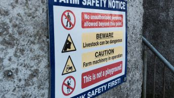Farm fatalities reduce by 40% – but still account for 41% of work deaths