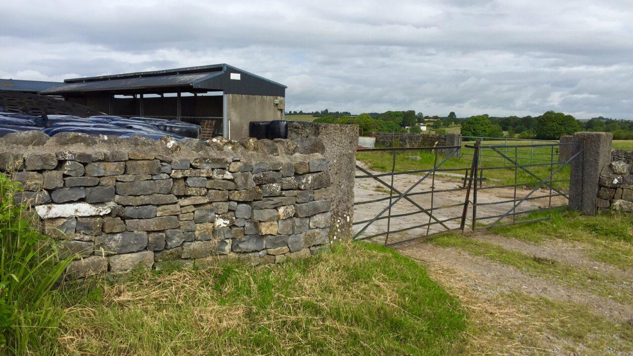 Limerick farmer left 'in pool of blood' after assault