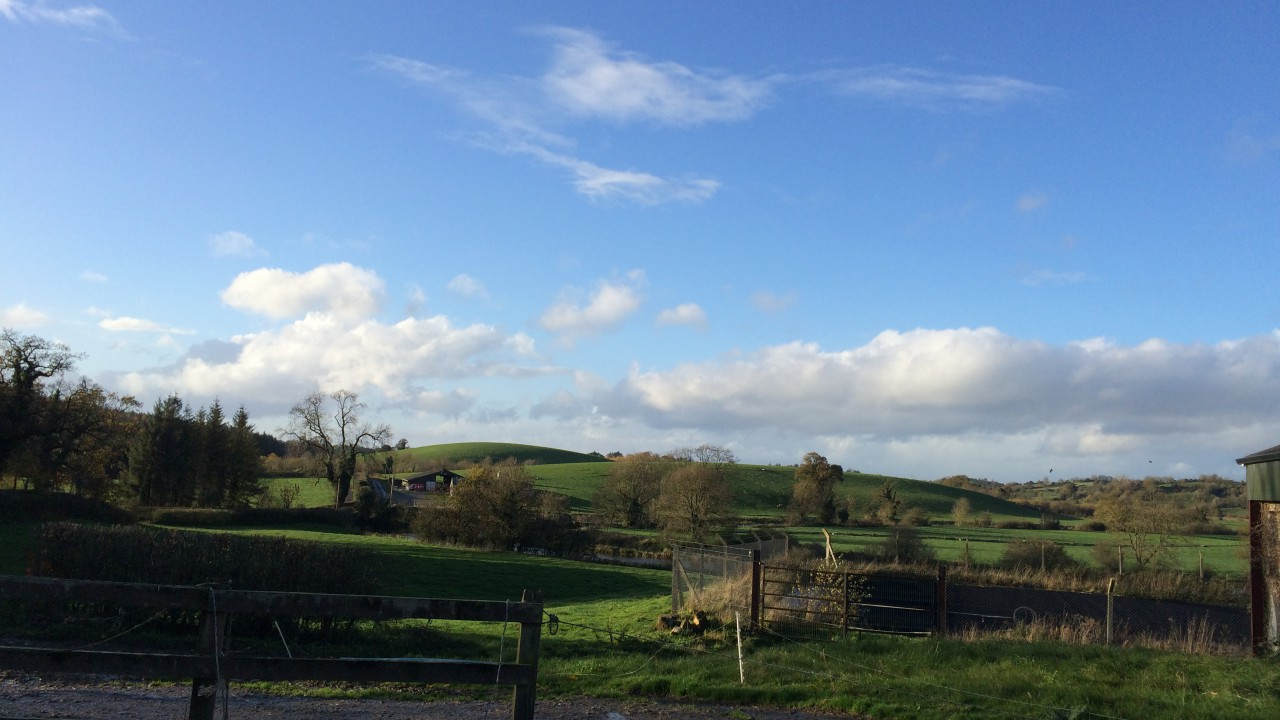 Embrace FARM to set up Cork support network