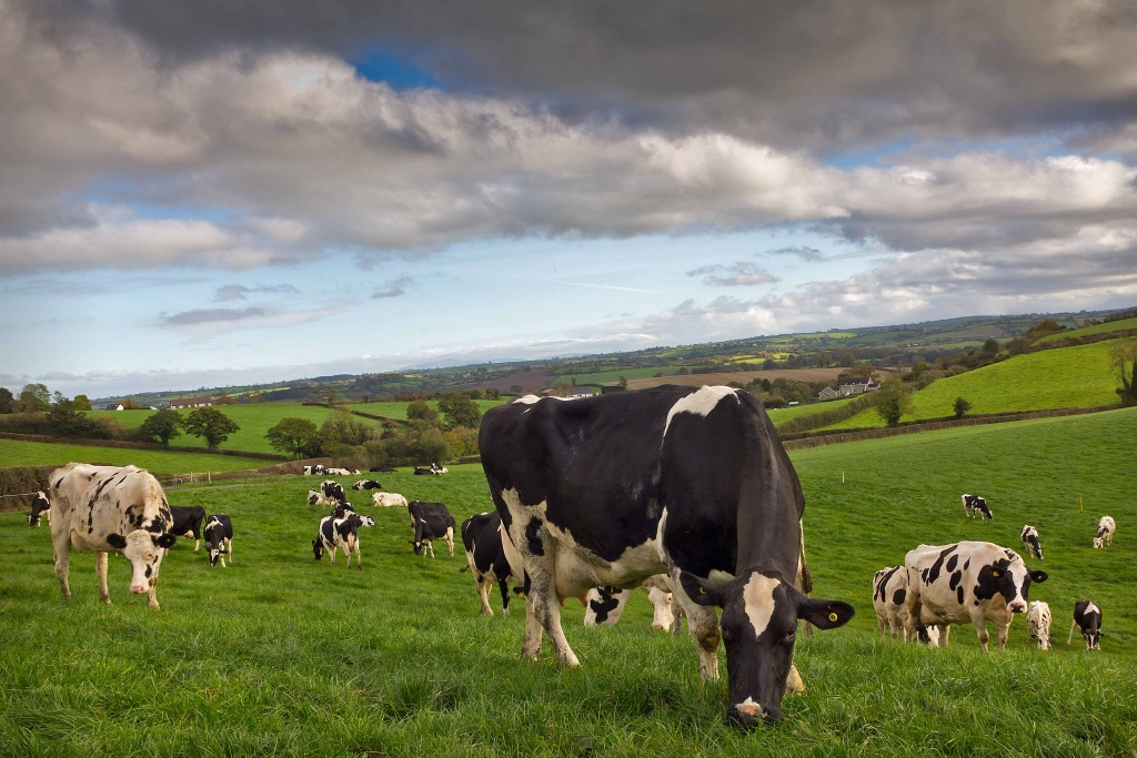 Time for farmers to stop talking about the 'green image' of farming
