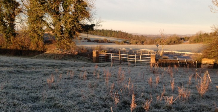 Cool and unsettled weather in store along with widespread frost