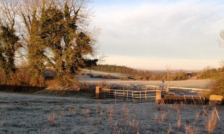 A wet, windy and wintry week in store – Met Eireann