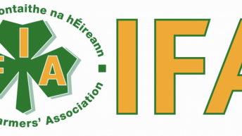 Con Lucey letter to IFA President Eddie Downey on August 18, 2014