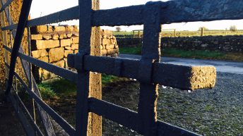 Recommendations on rural crime 'must be implemented'