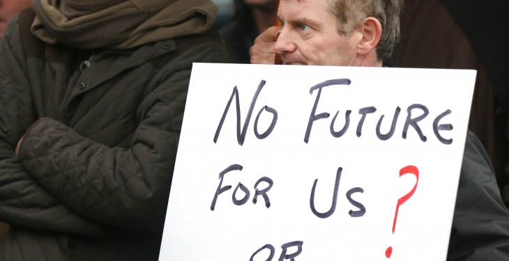 Fianna Fail call for separate tillage and livestock crisis funds