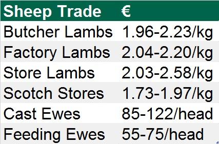 sheep trade 0411