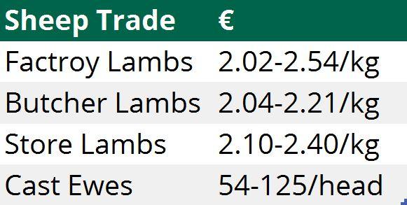 sheep trade 30112015